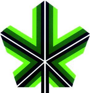 logo-comunita-ossola_2